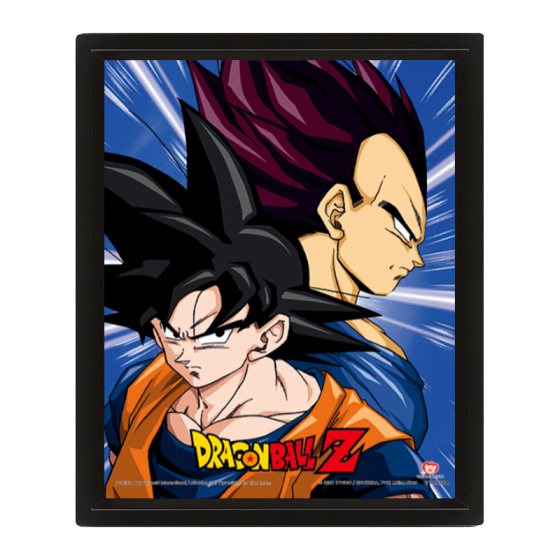 POSTER 3D PROTECTORS & DESTROYERS DRAGON BALL Z